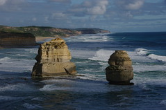 Part of the 12 Apostles (jeffreymotter) Tags: australia greatoceanroad echidna theapostles koalabears
