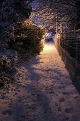 path to walk to work () Tags: snow cold scenic frosty fresh firstsnow snowfall isleofman ramsey mywalktowork