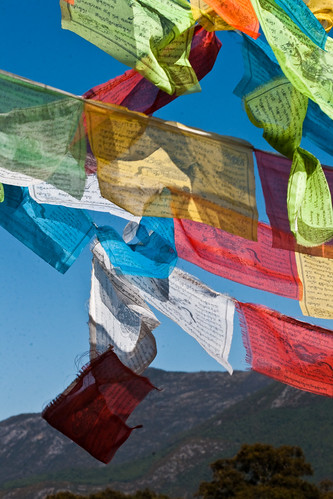 Prayer Flags (by niklausberger)