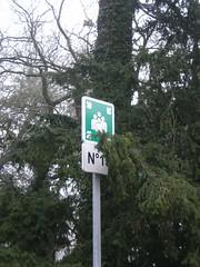Point de ralliement n 15 - Universit de Nantes, Campus du Tertre (Sylvain Maresca) Tags: pictogramme