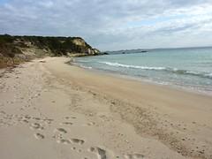 Sur le sentier de Sperone : la plage de la Cala di Ciappili