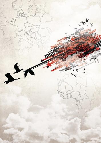 Migrace / Migration 1