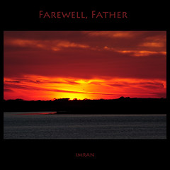 Four Hundred Sunsets Fly By. Farewell, Father - IMRAN™ — 4,300+ Views! Explored! (ImranAnwar) Tags: 2008 2010 beach bird clouds d300 dusk family framed greatsouthbay imran imrananwar landscapes longisland marine newyork nikon outdoors red sky square suffolk sunset tranquility water yellow