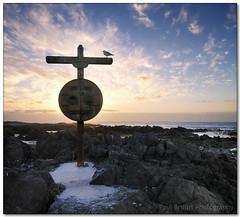 Cross Seagull - With Clouds (Panorama Paul) Tags: sunset cross seagull blaauwbergstrand nohdr sigmalenses nikfilters vertorama nikond300 goldstaraward wwwpaulbruinscoza paulbruinsphotography heatherbam