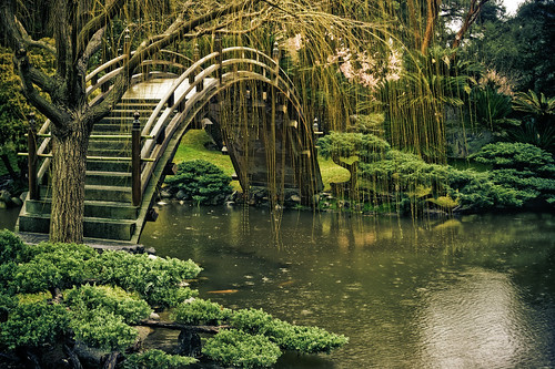 Japanese Garden in the Rain