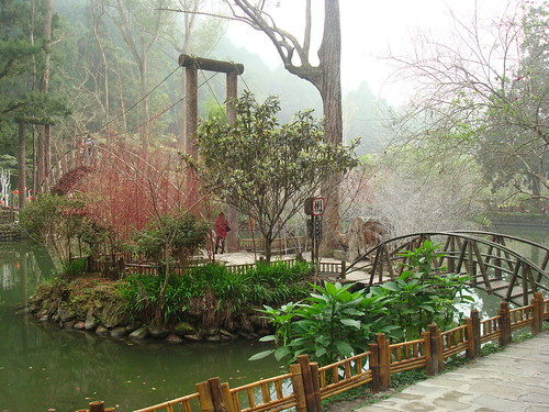 大學池 @ 溪頭森林遊樂區