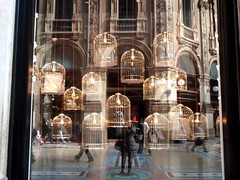 la moda in gabbia (Preziosa 1 / Gabriella) Tags: milano galleria gabbie
