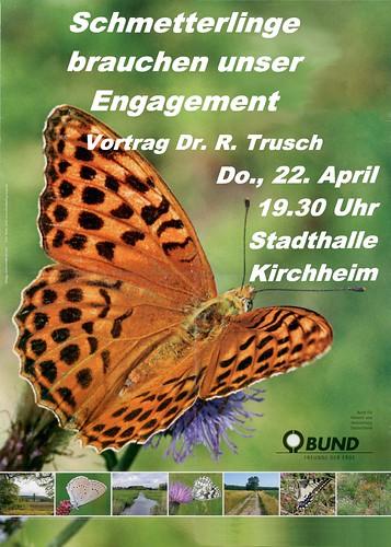 Vortrag_Schmetterlinge