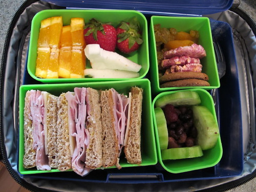 Bento Box Lunch - 3/15/10