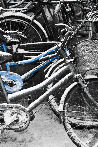 Cycle and Snow (by niklausberger)