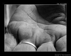 thehand (Sasha.A) Tags: roses blackandwhite woman white abstract black art nature beauty portraits canon nude photography photo glamour erotic artistic feminine redhead blonde glam sasha brunette 500mm seminude 18mm artisticphotography