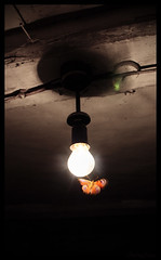 Metelyk (AnkhaiStenn) Tags: light color colour lamp loss bulb last butterfly dark insect death hope fly rainbow ray darkness russia wing ukraine beam soul doom gloom russian ukrainian