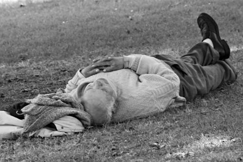 Durmiendo la siesta by Carlos Regalado