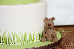 Lil'Bear (The Well Dressed Cake) Tags: bear brown grass cake woodland ivory sage deer fawn round babyshower celadon