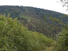 Mt Myojyogatake