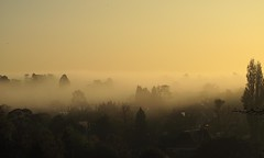 misty morning (felt_tip_felon) Tags: panorama mist fog landscape scenery scenic surrey views vista reigate