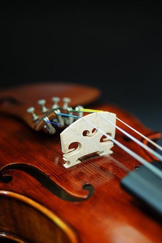 her violin 1