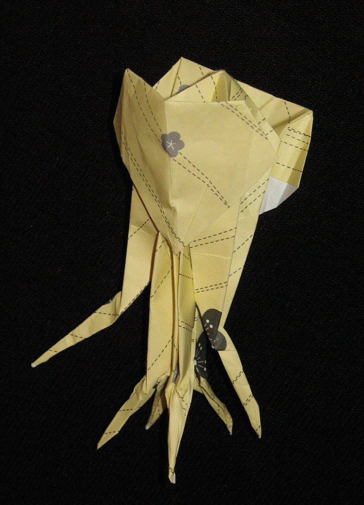 the worlds best photos of origami and squid flickr hive