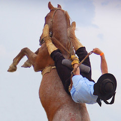 Bagual (Eduardo Amorim) Tags: brazil horses horse southamerica brasil caballo cheval caballos cavalos pelotas pferde cavalli cavallo cavalo gauchos pferd riograndedosul pampa hest hevonen campanha brsil chevaux gaucho  amricadosul hst gacho  campero amriquedusud  gachos  sudamrica suramrica amricadelsur  sdamerika jineteada   costadoce camperos americadelsud gineteada  americameridionale campeiros campeiro eduardoamorim iayayam yamaiay