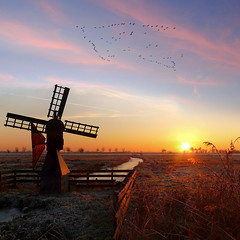 The little meadow mill (Bn) Tags: geese topf50 thenetherlands topf300 historic polder topf100 topf200 waterland tms photogenic flyinggeese topf400 vformation tellmeastory firstquality coloredsky windvaan 100faves 50faves 200faves meadowmill zuiderwoude drainagemill topseven poldermolen 300faves anawesomeshot 400faves sunsetinwinter sognidreams weidemolen thelittlewindmill draaiendekop windmillinthenetherlands aanbrengertje peregrino27newvision