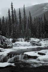 Elbow Falls in Winter (Mike Bingley) Tags: winter blackandwhite snow canada ice water river kananaskis waterfall alberta elbowfalls elbowriver movingwater kcountry justpentax