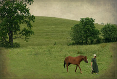 Amish Girl... (~~SANDY~~) Tags: horse tree texture field hill amishcountry amishgirl ruralohio pareeerica