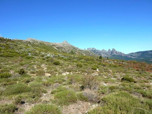 Sur le sentier de retour vers Veta : la Punta di A Bambiola et les aiguilles de Bavella