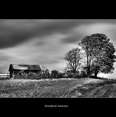 (Shobeir) Tags: blackandwhite bw tree abandoned monochrome landscape countryside interestingness farm explore oldhouse forgotten abandonedhouse upstatenewyork roadside abandonedplace movingclouds ruralscene rurallandscape newyorklandscape singleraw shobeiransari northeastcountryside