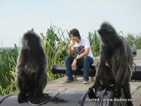 Destinasi pelancongan menarik sekitar Kuala Selangor bakal membawakan ...