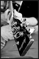The boss (Antonio Carrillo (Ancalop)) Tags: blackandwhite bw music white black art canon guitar guitarra musica ancalop