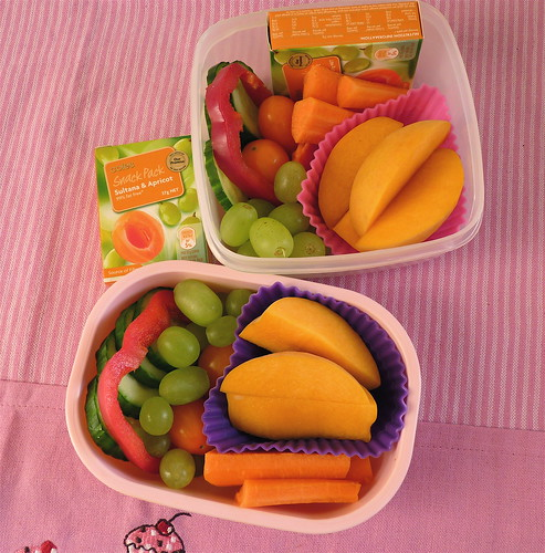 Snack Bento for 1.03.10