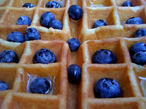 Waffle with Fresh Blueberries