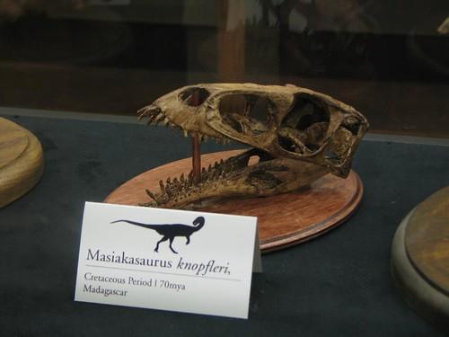 City Museum Masiakasaurus