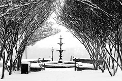 image (Ty Johnson Photography) Tags: white snow fountain contrast
