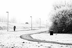 In The Cold, Feel The Cold (Alfred Grupstra) Tags: bw blackandwhite bycicle highkey path snow wervershoof noordholland nederland nl