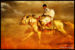 Riding The Storm ! (Bashar Shglila) Tags: horses clouds interesting poem with action shots sony taken knight libya tripoli sidi libyan the hooves libia galloping  libyen    lbia libi mywinners libiya  liviya libija saih  dschx1    lbija  lby libja lbya liiba livi