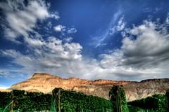2009 Colorado September 045 (TVGuy) Tags: sky clouds vineyard vines colorado wine grand junction grapes garfield palisades estates