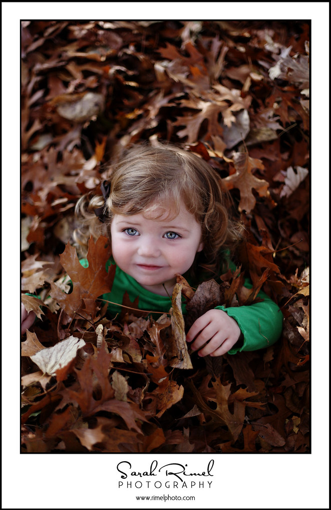 leaf fun 07