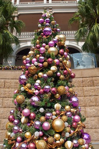 Hong Kong Xmas Tree TST