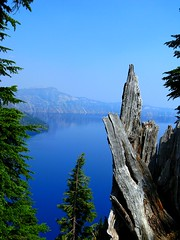 Crater Lake (David Fitzgerald3) Tags: