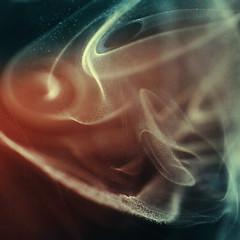 Stardust (M. G.. W...) Tags: macro nikon smoke flash nikkor50mmf18 strobe nissin d60 speedlite dcr250 raynox di622