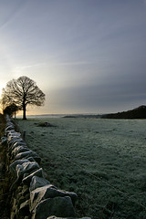 A frosty start to the day (Chris Beesley) Tags: morning winter cold frost cheshire derbyshire bluesky frosty pentax1645 pentaxk100dsuper