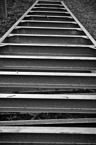 Ladder in black and white