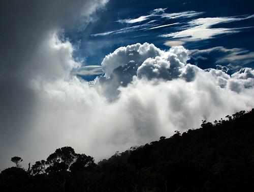 Mount Kinabalu 07