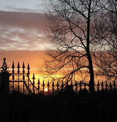 Sunset and wrought iron (Lune Rambler) Tags: winter sunset tree nature iron glow colours wroughtiron january railings breathtaking wrought hestbank thegalaxy topseven anawesomeshot platinumheartaward theperfectphotographer breathtakinggoldaward artofimages saariysqualitypictures platinumbestshot platinumpeaceaward bestcapturesaoi breathtakinghalloffame lunerambler elitegalleryaoi mygearandmepremium mygearandmebronze mygearandmesilver mygearandmegold mygearandmeplatinum mygearandmediamond flickrstruereflection1 flickrstruereflection2 4timesasnice 6timesasnice 5timesasnice 7timesasnice