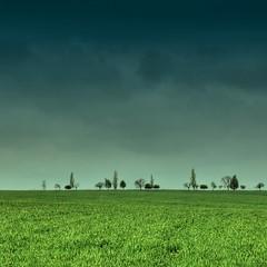 rainy (rasstock) Tags: green rain canon landscape ukraine hdr hdri mariupol donetsk azov