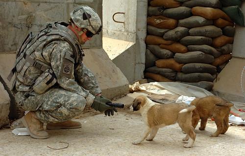 Foto de un soldado tomada por James P. Hunter