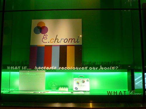 E.chromi at the Wellcome