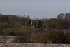 Stonesfield Walk 102