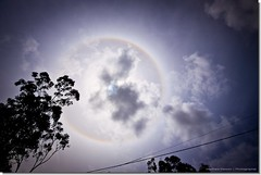 Sun Dogg (Matthew Stewart | Photographer) Tags: light dog sun ice circle 22 rainbow crystal matthew hexagonal australia brisbane 45 stewart qld queensland parhelion atmospheric parhelia degrees phenomenon clevelandpoint kingtide